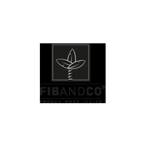 Logo FibandCo