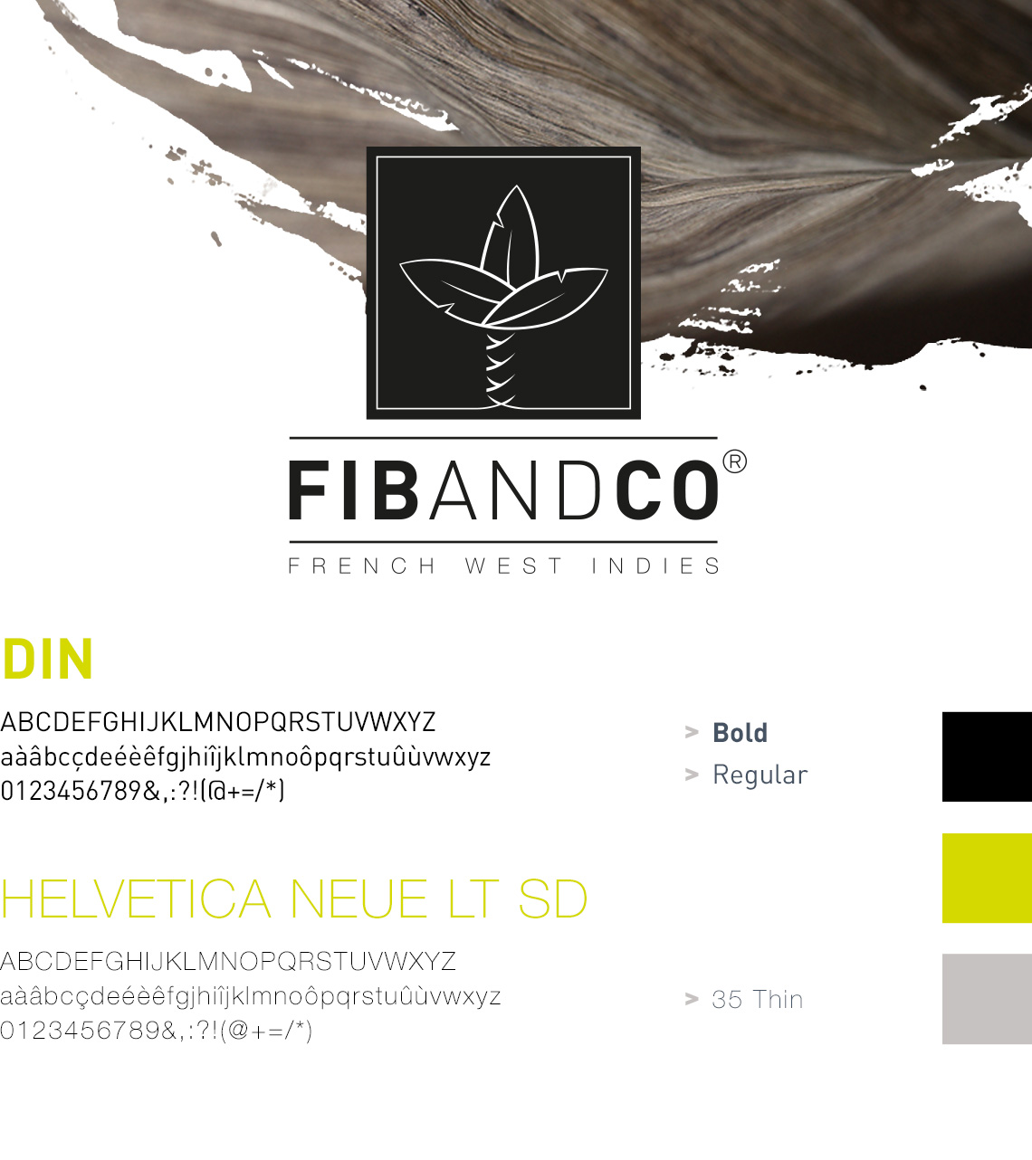 Identite visuelle Fib and Co 1